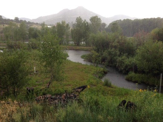Escape the Summer Heat